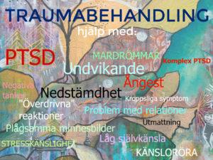 Traumabehandling Malmö